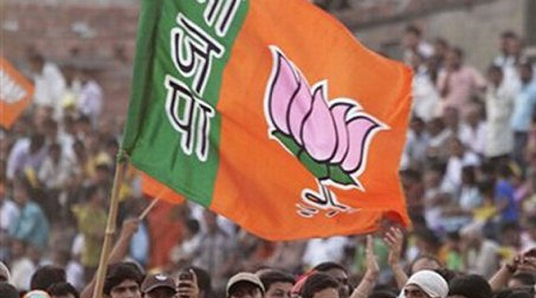 BJP wins 54 seats in Junagadh civic body polls