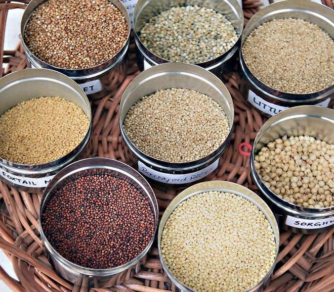 Govt decides to declare 2018 as National Year of Millets