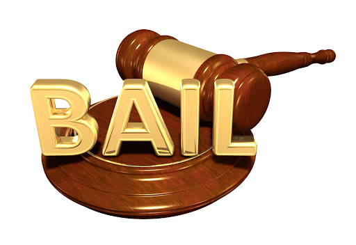 17 Tablighi Jamaat members released on bail