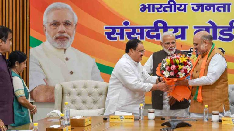 Senior BJP leader J P Nadda appointed as party