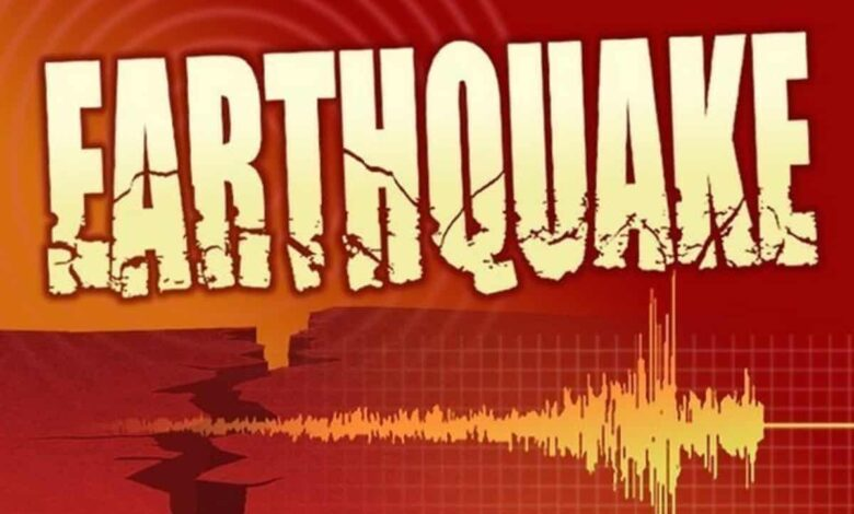 Two medium-intensity quakes hit Assam, Gujarat