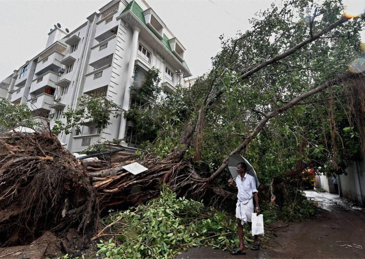 cyclonevardah:tamilnaduallocatesrs500crforrehabilitationwork
