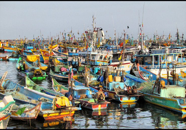 Fishing ban for mechanized boats ended in Tamil Nadu
