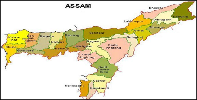 BJP, BPF decide to fight Assam assembly polls together