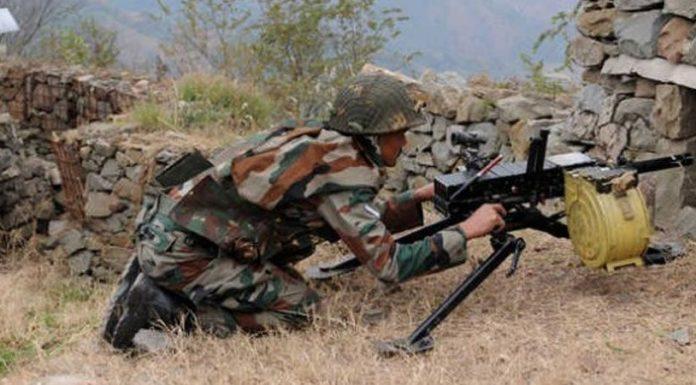 16 animals die as Pak violates ceasefire along LoC in J-K