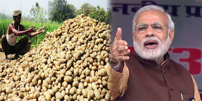 PM Modi to inaugurate 3rd Global Potato Conclave-2020 at Gandhinagar today