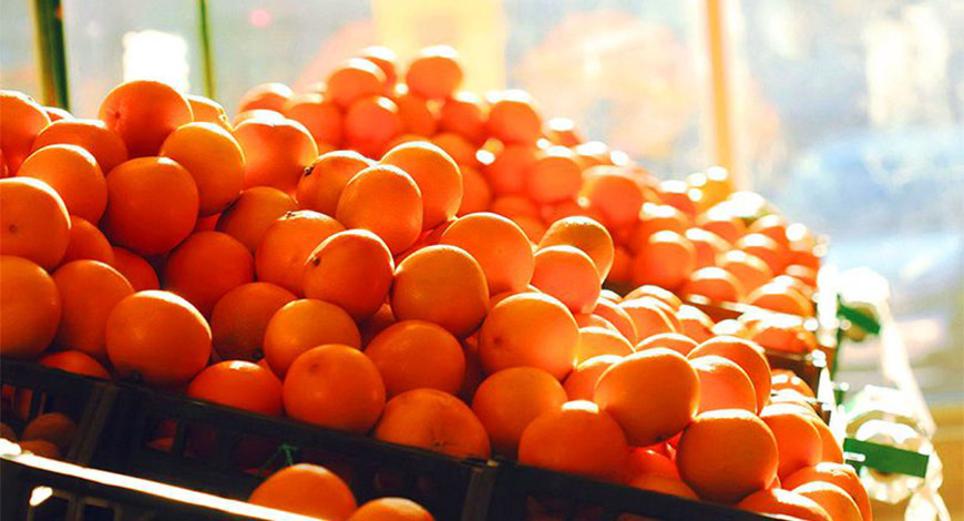2nd World Orange Festival begins in Nagpur today