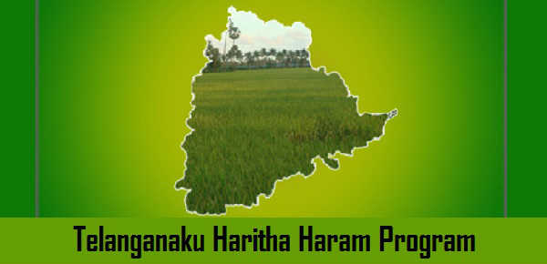 Second phase of Haritha Haram to be launched in Telangana today