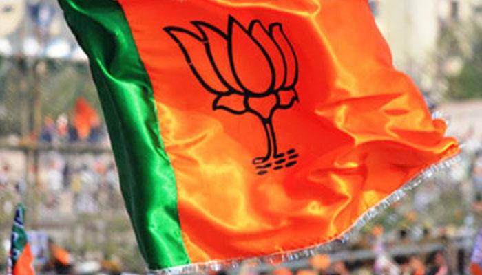 BJP wins all seven Lok Sabha seats in Delhi