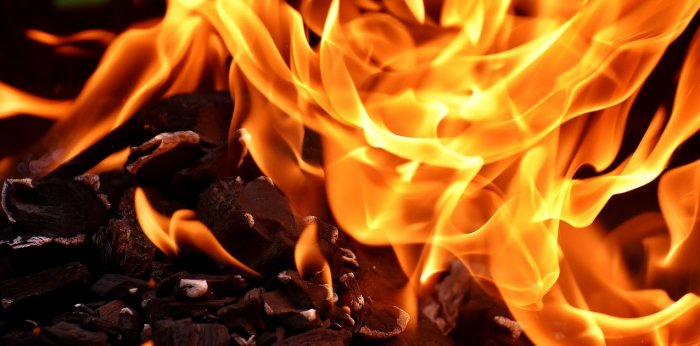 Fire at factory in Pratap Nagar, Delhi; one dead