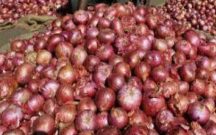 Govt imposes minimum export price for onion to check domestic prices