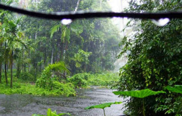 Heavy Rain Continues in Kerala as Cyclone Tauktae Intensifies