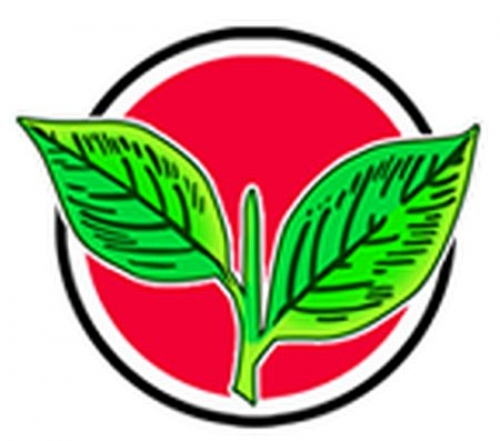 ecfreezesaiadmkselectionsymboltwoleaves