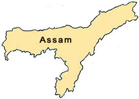 Assam govt seeks 600 companies of armed forces for upcoming assembly polls