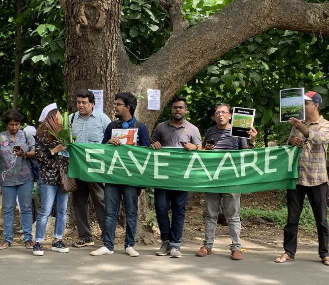29 arrested in connection with Aarey Colony protest