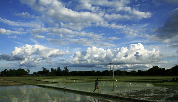 IMD predicts above normal monsoon this year