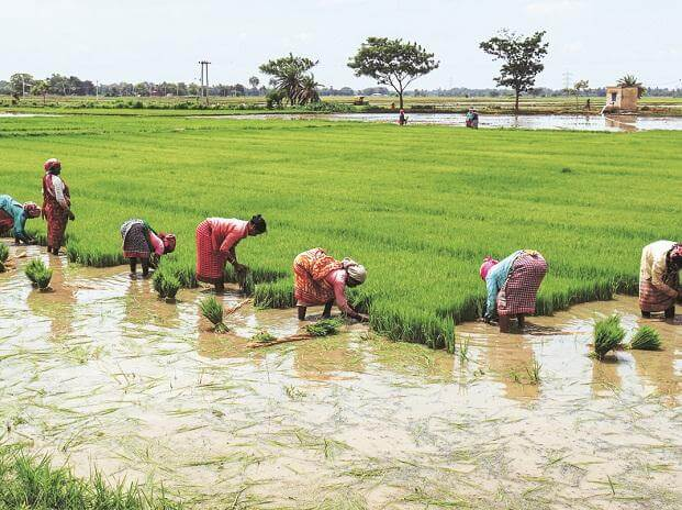 Rs 11,000 cr farm loans expend by Telangana govt during ongoing COVID-19 Crisis