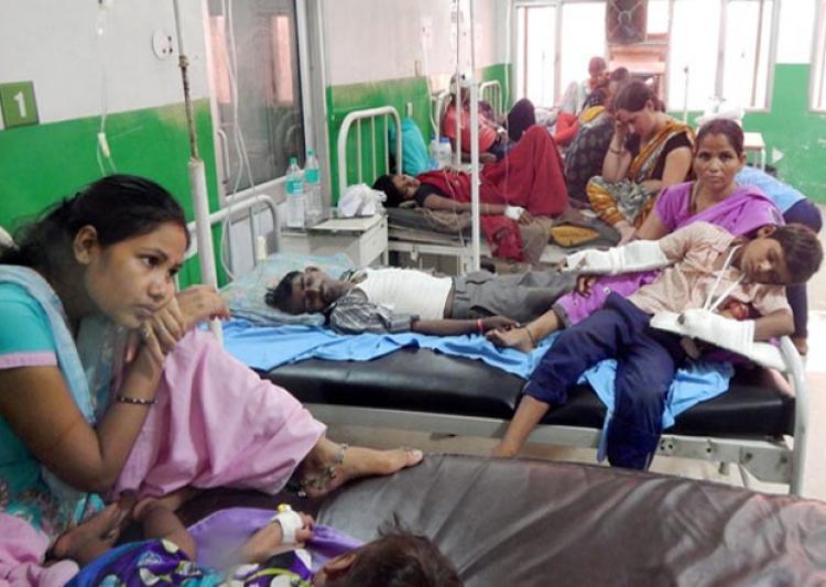 Chikungunya claims five more lives in Delhi