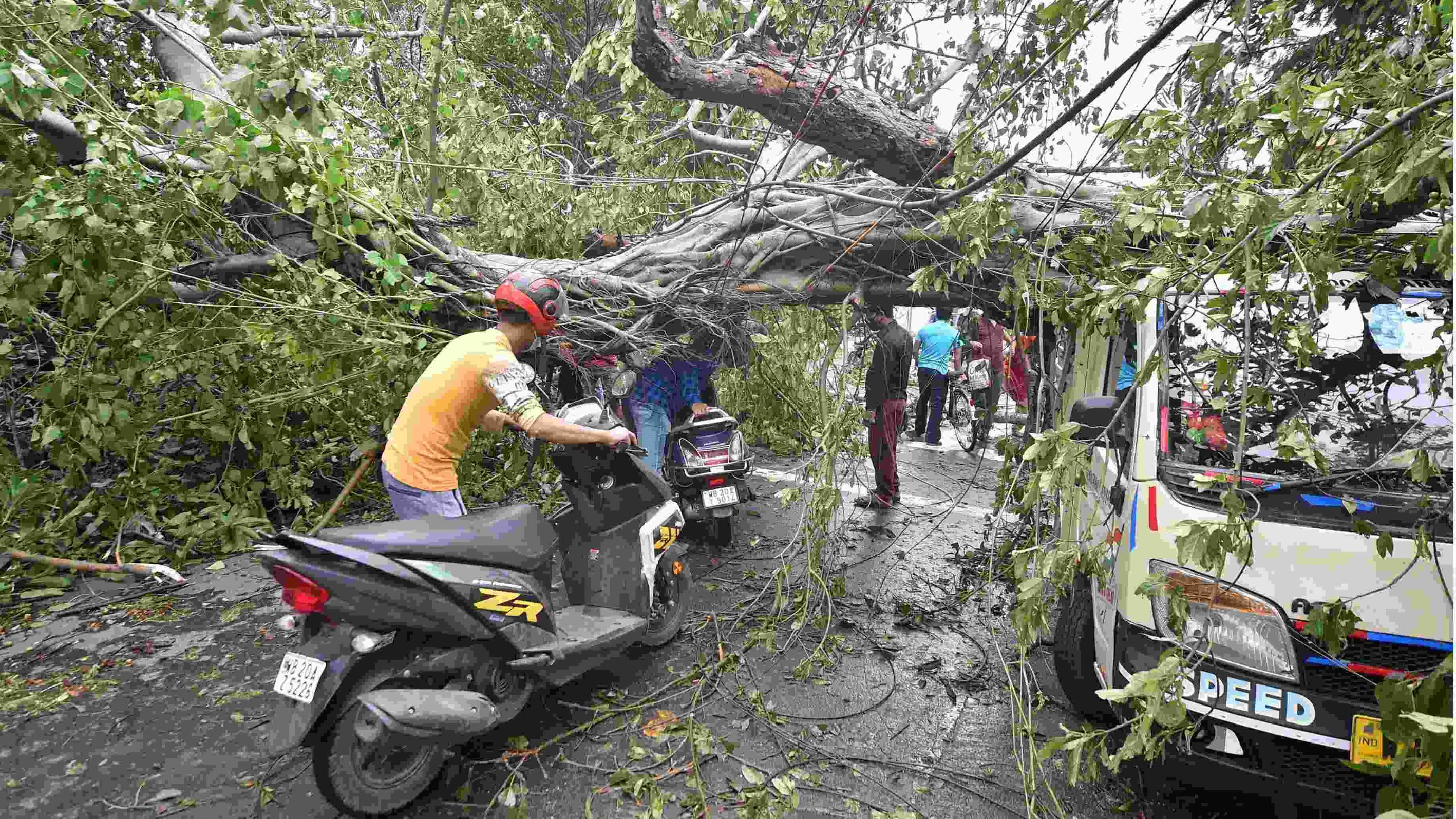 Central team to visit cyclone AMPHAN affected areas of West Bengal today
