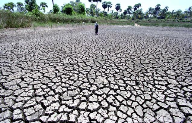 Telangana seeks Rs.2,514 cr for drought relief