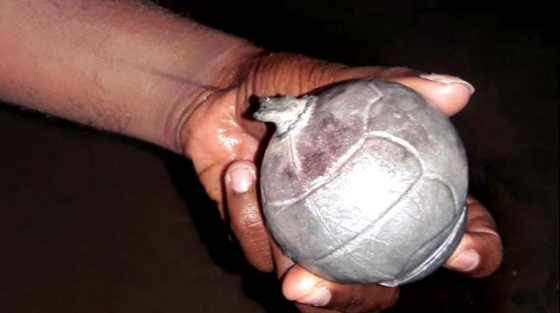 17 hand grenades recovered near LoC in Poonch