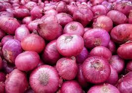 Centre to import 1,000 tonnes onions