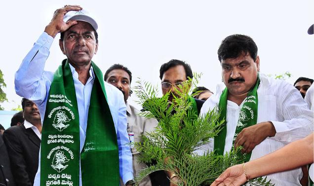Telangana CM  KCR launches plantation programme